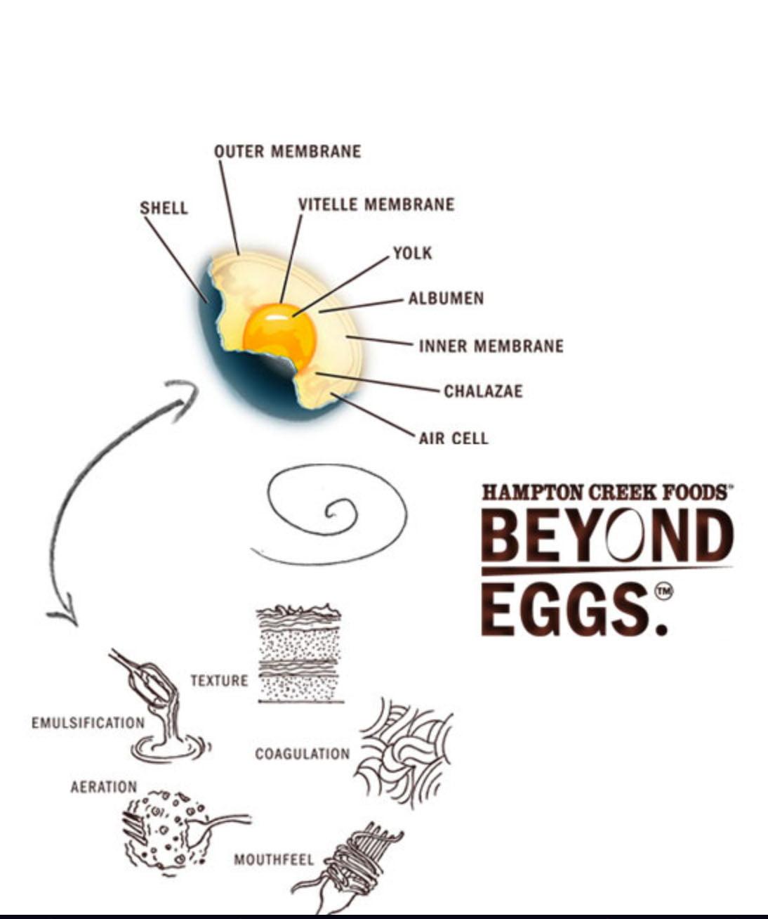 hampton-creek-foods Quand Bill Gates finance les œufs sans poule !