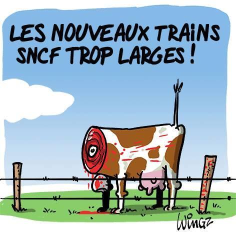 sncf-vache Nouveaux trains trop larges à la SNCF : le web se déchaîne en image !