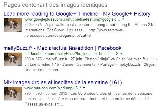 recherche-image-google-images-identiques Rechercher sur Internet à partir d'une image