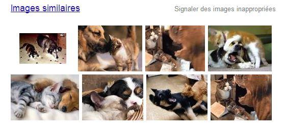 recherche-image-google-images-similaires Rechercher sur Internet à partir d'une image