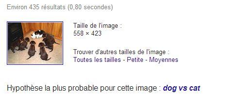 recherche-image-google-resultat Rechercher sur Internet à partir d'une image