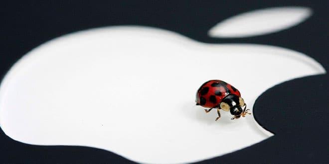 bug-apple