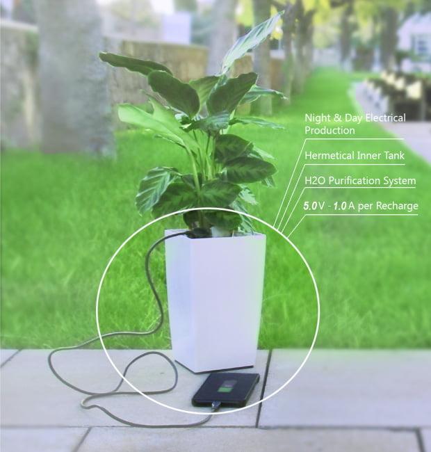 bioo-lite Recharger son smartphone grâce à une plante verte, c'est bientôt possible !
