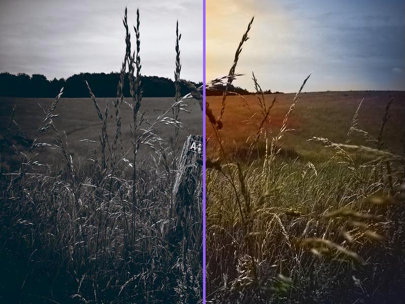 rendered-comparison-colorize-photo-2 Coloriser une photo noir et blanc gratuitement et en ligne !