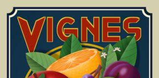 purecss-vignes-324x160 Accueil