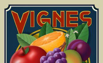 purecss-vignes-356x220 Accueil
