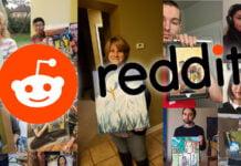 reddit aigrette peinture home2